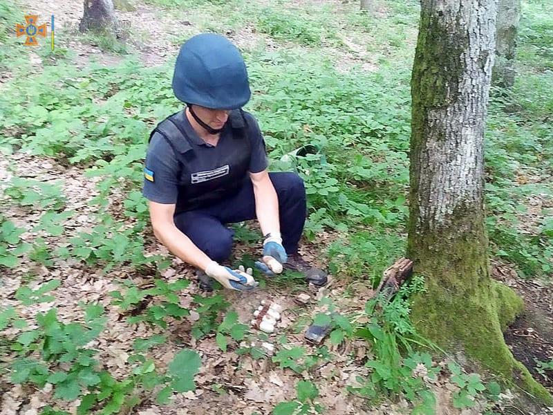 У лісі на Мукачівщині виявили гранати та набої: фото з місця знахідки