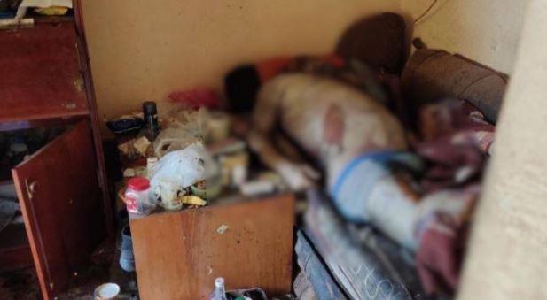 Моторошна знахідка в одній із багатоповерхівок Мукачева: шокуюче відео