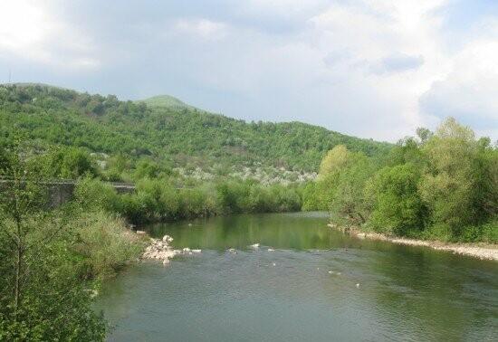 У річці Латориця втопився чоловік: що відомо про трагічний випадок