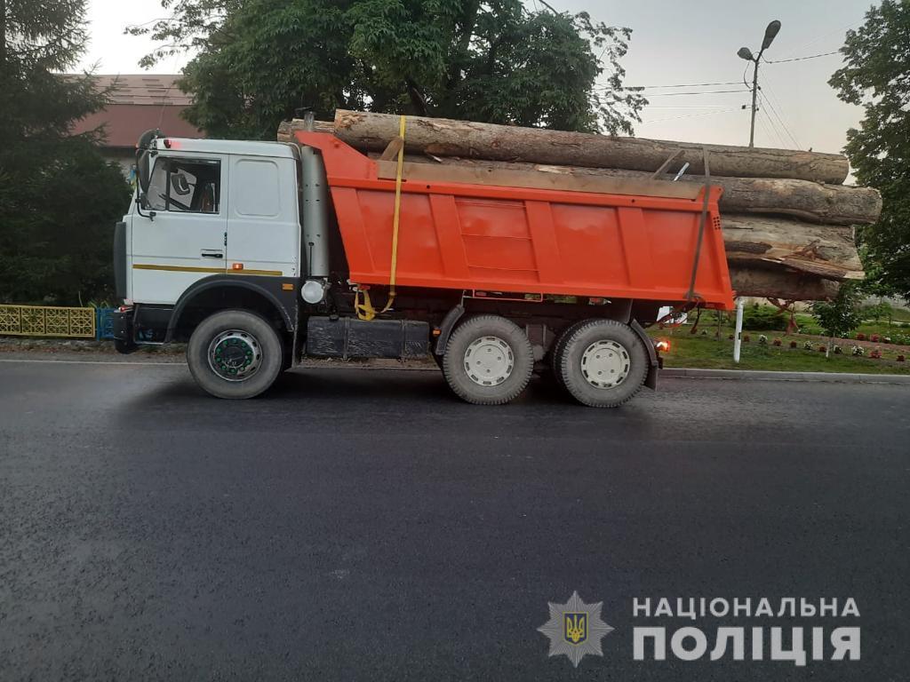 Поліцейські затримали вантажівку з нелегальною деревиною
