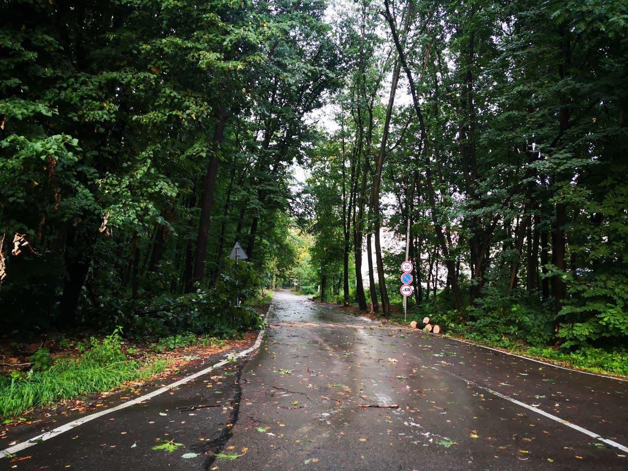 Ужгород та Берегівщина найбільше постраждали від негоди