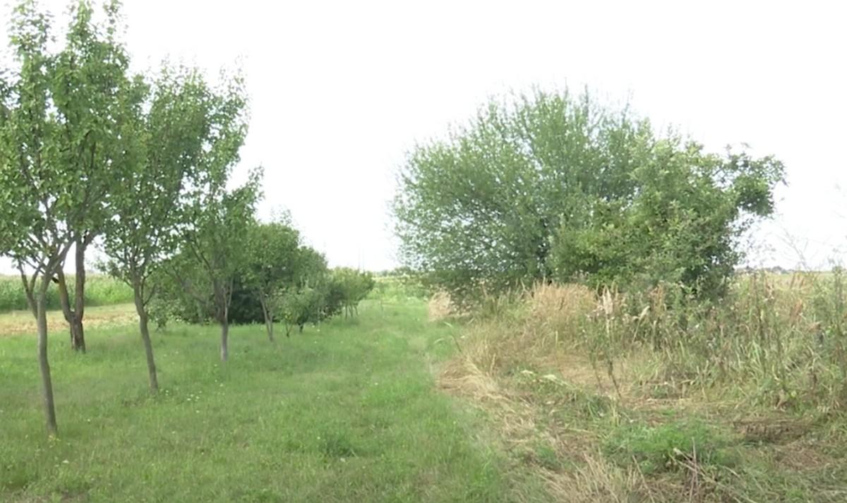 У селі на Ужгородщині люди роками борються за справедливість