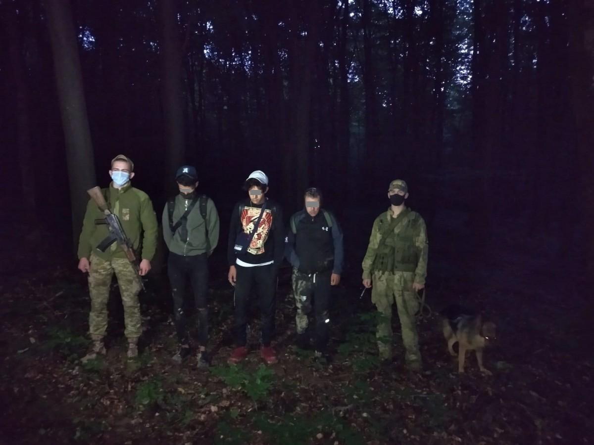 Прикордонники затримали нелегалів, які лісом пробиралися у Словаччину