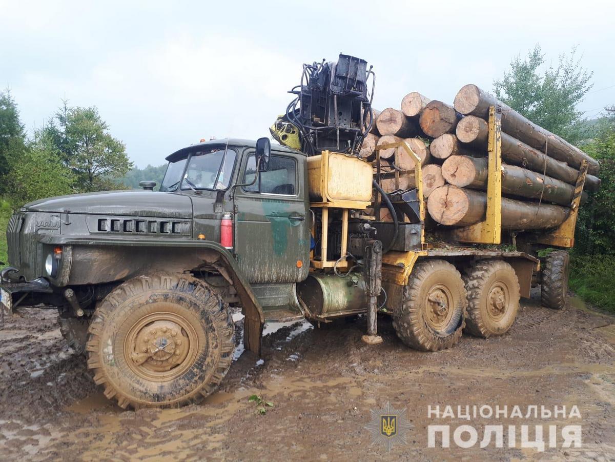 Поліція виявила вщент заповнену діловою деревиною вантажівку