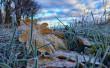 Укргідрометцентр прогнозує перші заморозки в Україні: коли очікувати
