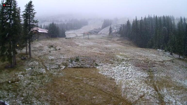 У горах Закарпаття засніжило: фото