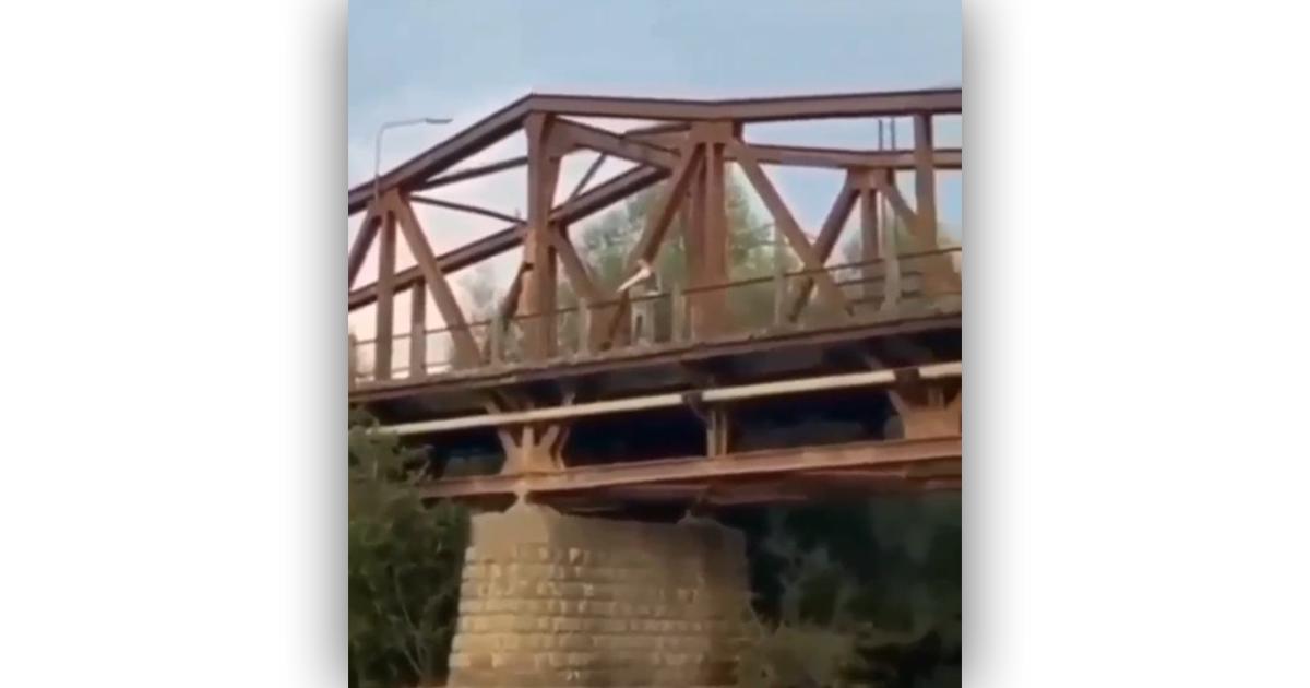 Мережею шириться шокуюче відео, зняте на Закарпатті
