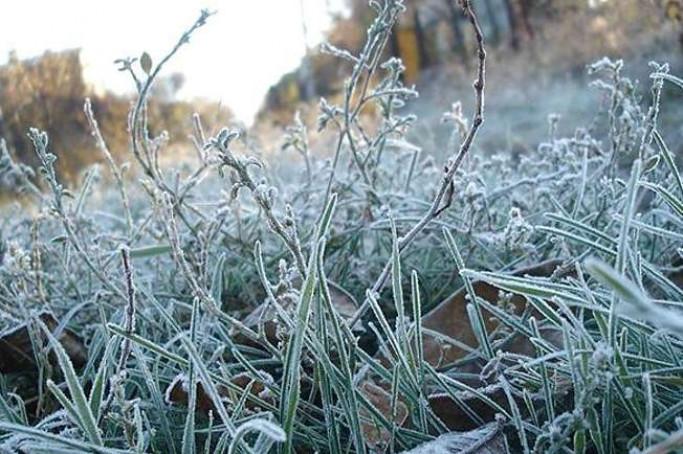 Початок тижня буде прохолодним: прогноз синоптиків