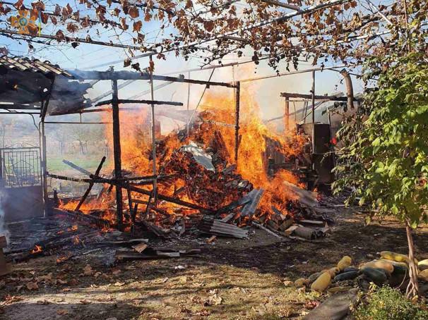 Під час пожежі на Ужгородщині рятували свиней і кролів