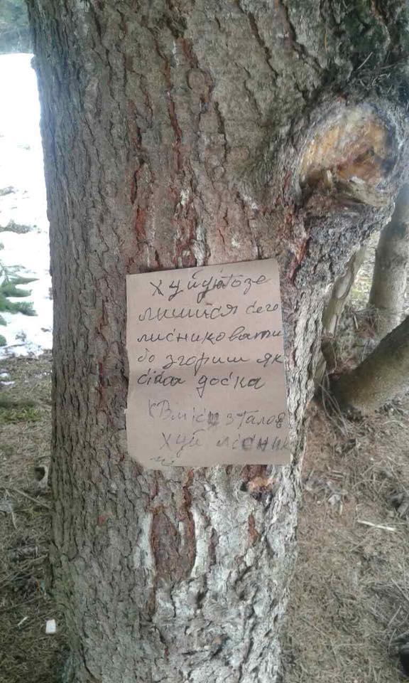 Невідомі зрізали кілька дерев та залишили лісівникам на місці злочину записку із погрозами