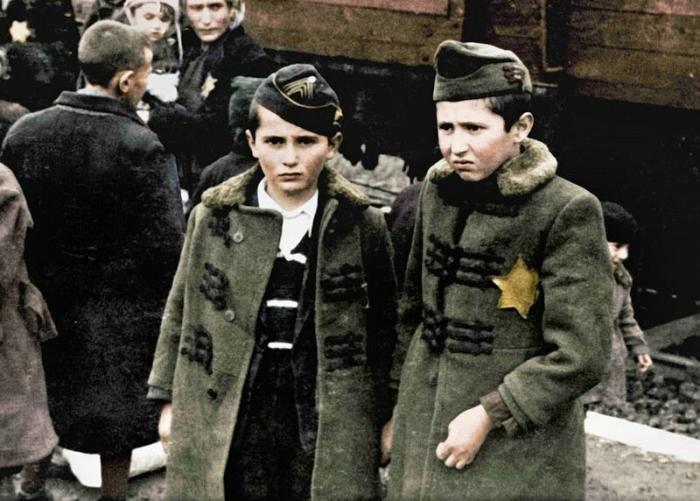 Брати Лілі Джейкоб, які загинули в Освенцимі разом з батьками та трьома іншими братами