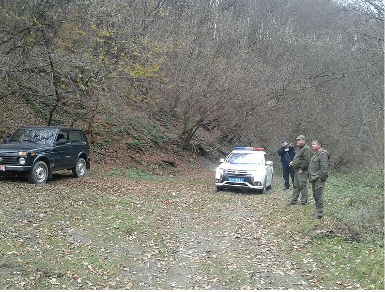 У Закарпатській області були спіймані «чорні лісоруби», які встигли вирубати ліс у природно-заповідному фонді